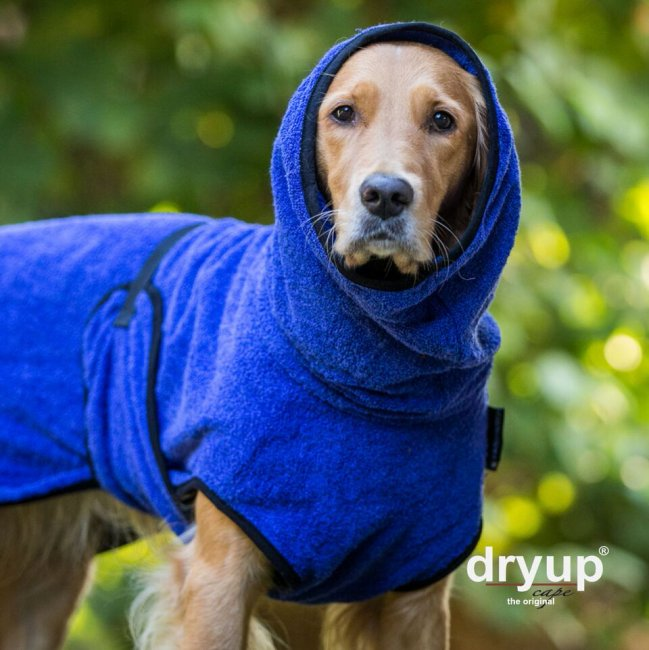 Dryup Cape