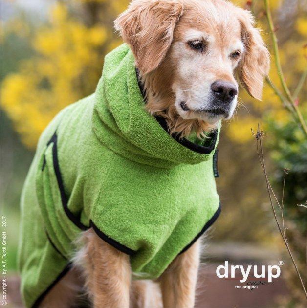 "Dryup Cape Kiwi ""SONDEREDITION"""